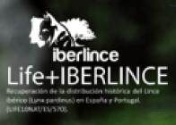 Logo Life+Iberlince