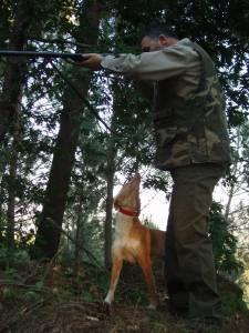 En portada. Riesgos Innecesarios. caza del conejo