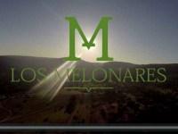 Los melonares