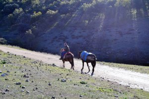 Fuente del Villar montería sierra cazafv (6)