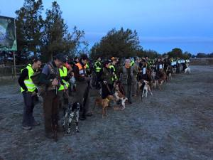 Campeonato de caza menor con perro 2015