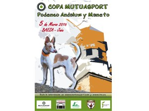 R - cartel podenco copia