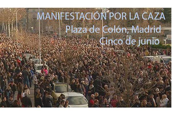 R - manifestacion 5 de junio
