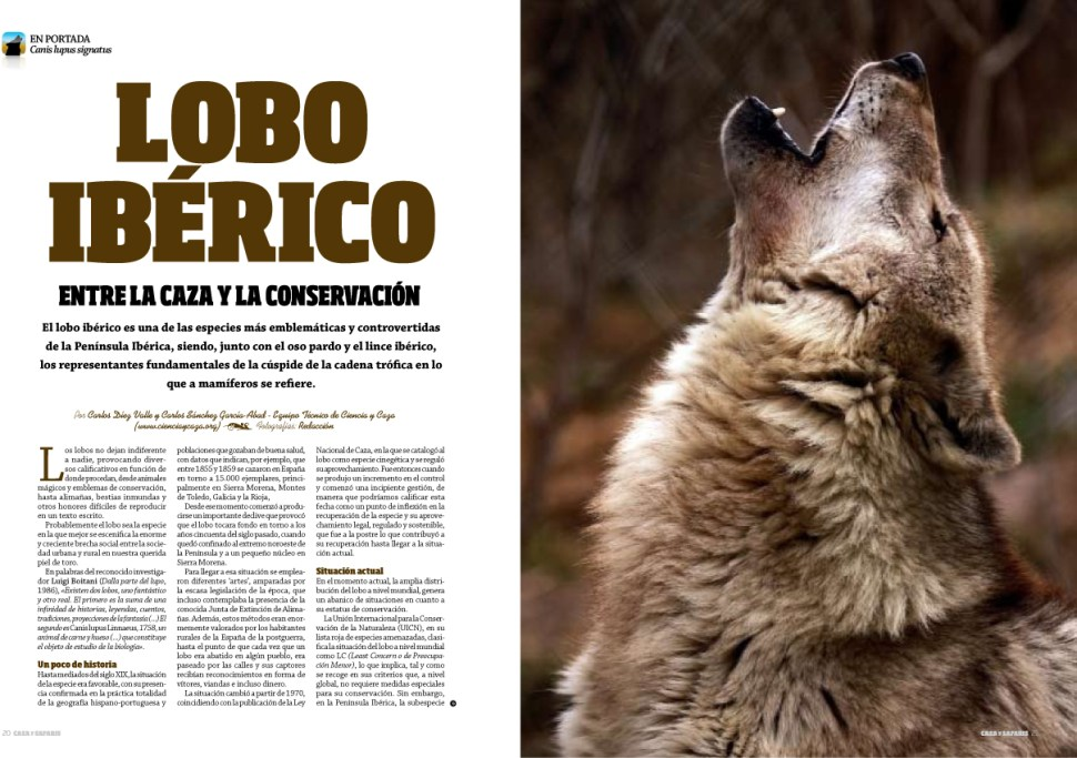 en portada lobo