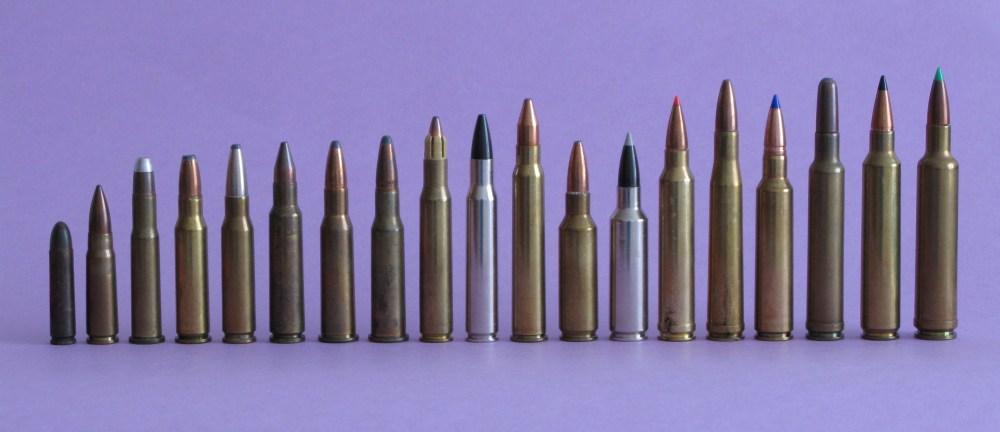 """La familia de los .30"""" es una de las más numerosas que existen. Dentro de ella se encuentran algunos de los cartuchos más reputados para la caza de animales medios de piel blanda. De izquierda a derecha, .30 Carbine, 7,62x39, .30-30 Winchester, .307 Winchester, .308 Winchester, 7,5x55 Suizo, 7,62 Russo, 7,62x53, .30-06 Sprgf. Accelerator, .30-06 Sprgf, .30 R Blaser, .300 SAUM, .300 WSM, .300 Winchester Magnum, .300 Holland & Holland Magnum, .300 Blaser Magnum, .300 Weatherby Magnum, .300 Remington Ultramagnum y .30-378 Weatherby Magnum."""