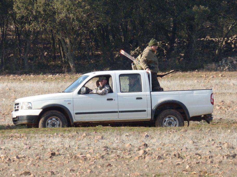 La colocación de los arqueros tiene que ser rápida, para evitar que se vacíen las manchas, y con los menos coches posibles. Algunas veces utilizar el habitual tractor de la finca con un remolque hace que los animales desconfíen menos.