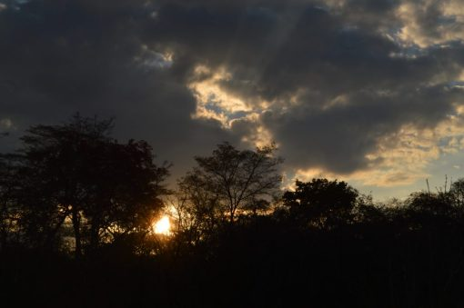 tanzania paisaje crepúsculo