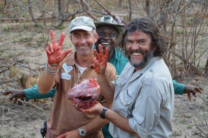 tanzania corazón búfalo dañado por bala