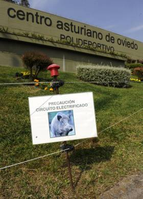 Circuito electrificado en el club Centro Asturiano de Oviedo. P. PAREDES