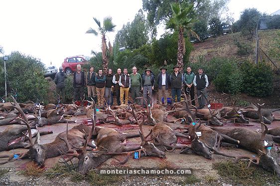 monteria-loma-del-majano-chamocho-7