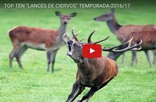 Top ten de lances de ciervos de la temporada 2016/17
