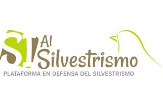 La Plataforma en Defensa del Silvestrismo estrena web y RRSS