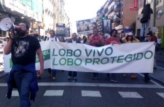 Sobre la manifestación pro-lobo del 12 de marzo en Madrid
