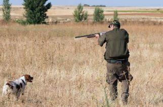 CLM: ecologistas claman contra la Junta por dejar cazar 'todo el año'