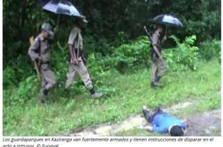 Survival pide condenar la política de disparar 'por la conservación'