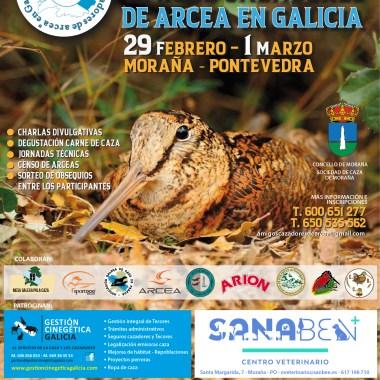 Arcea en Galicia