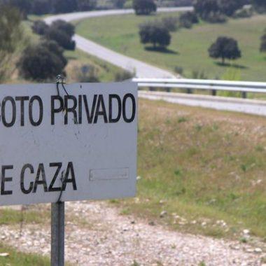 coto de Albacete