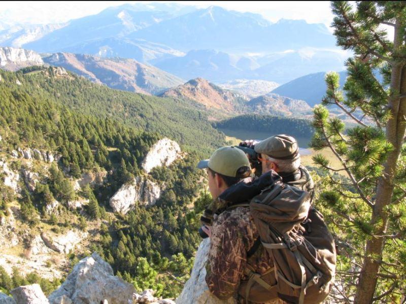 infracciones de caza