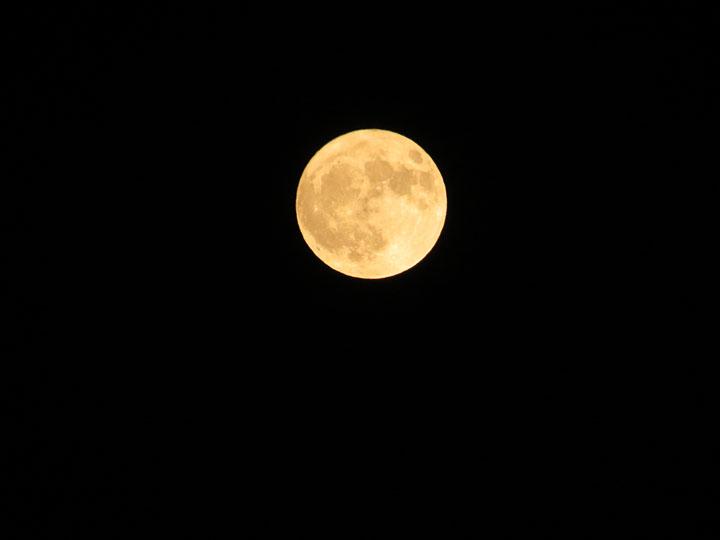 la Luna del cazador