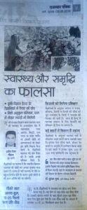 Phalsa Rajasthan Patrika 09.06.2016