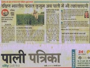 Rajasthan Patrika 19 January 2017 Safflower
