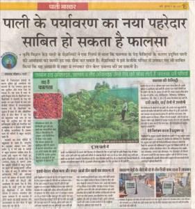 dainik bhaskar 5 june, 2015 phalsa