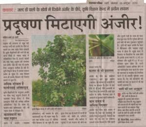 rajasthan patrika 28 october, 2013 fig reduces pollution