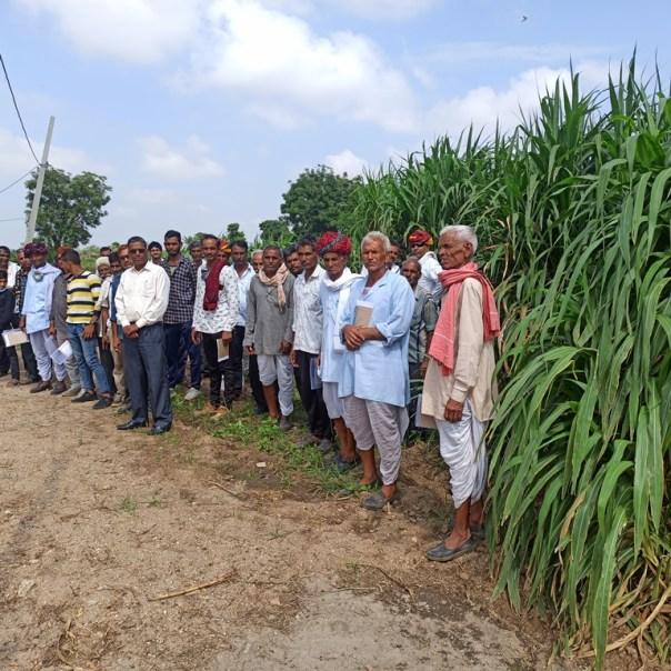 Visiting farmers