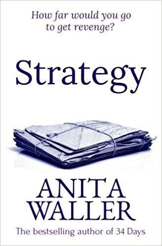 Strategy - Anita Waller - Book Cover