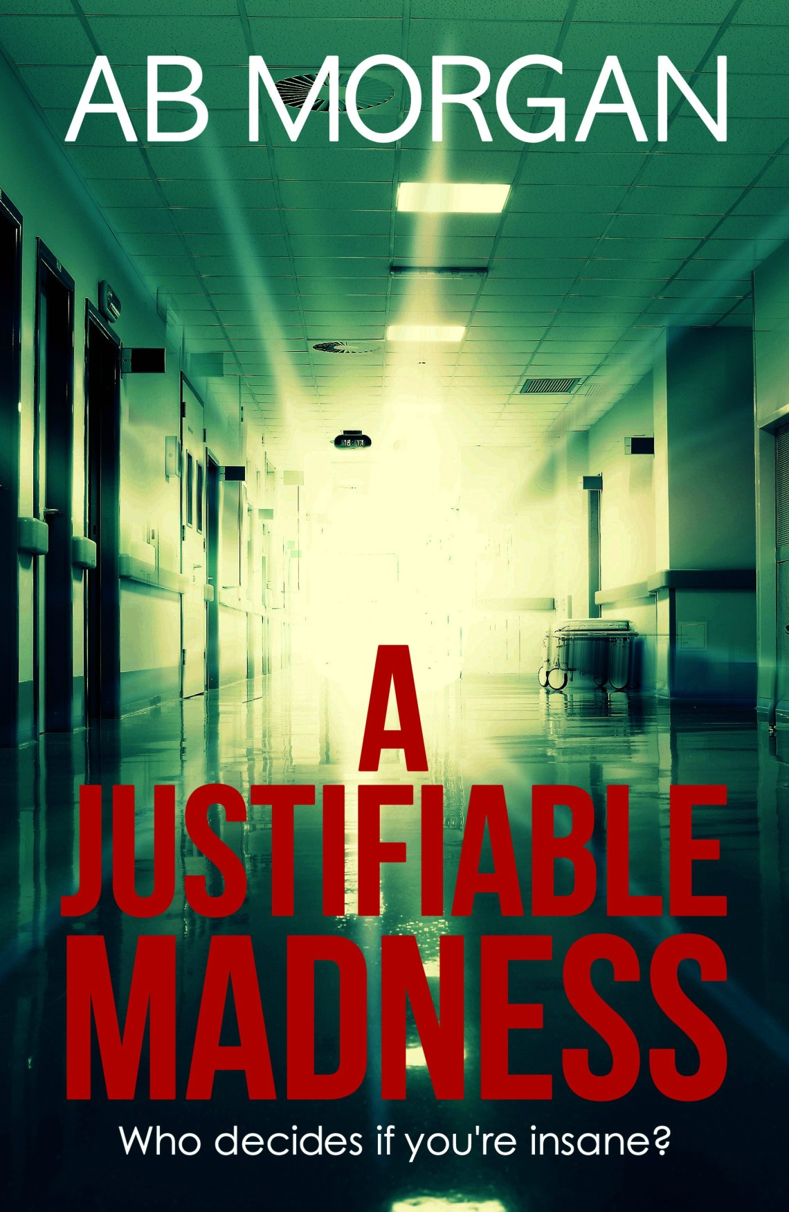 A Justifiable Madness - AB Morgan - Book Cover