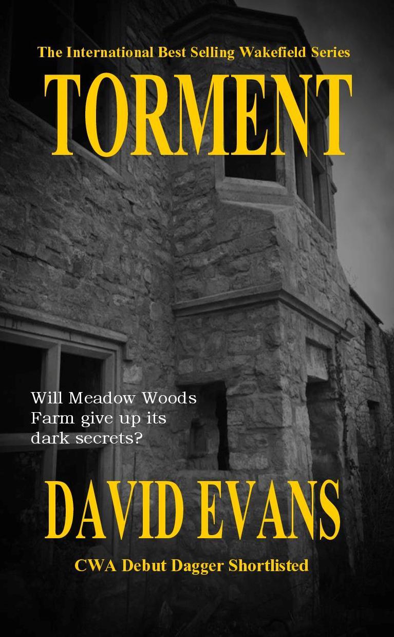 Torment David Evans Book Cover