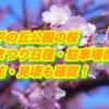 天平の丘公園の桜・はなまつり2019/日程・駐車場情報!開花・見頃も確認!