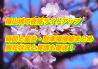 福山城の夜桜ライトアップの時間と屋台・駐車場情報まとめ2020!開花状況と見頃も確認!