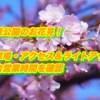 茂原公園の桜2019開花と見頃!駐車場・アクセス&ライトアップと屋台営業時間を確認