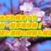 おみがわ桜つつじまつり2019屋台・駐車場情報!見頃と満開の時期も確認!