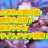 ときわ公園の桜2019開花と見頃!桜まつりとライトアップ情報!