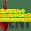 江東花火大会2019交通規制とアクセスを確認!屋台と穴場スポット情報も!