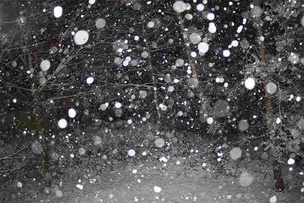 2016_0113_snowflakesx1