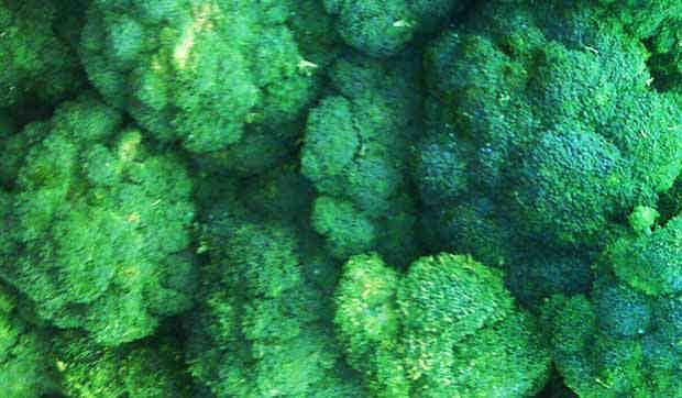 2016_0215_broccoli