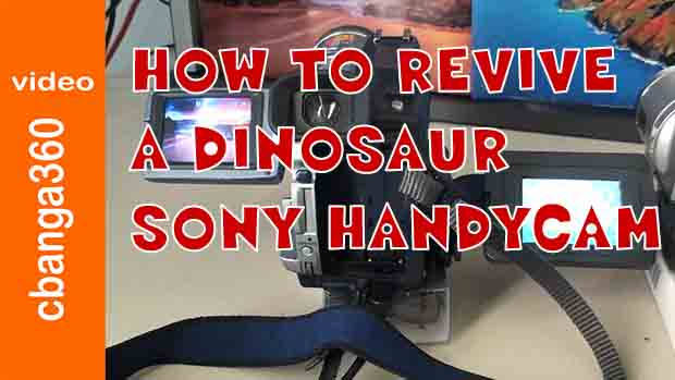 Watch How to Revive a Dinosaur Sony Handycam