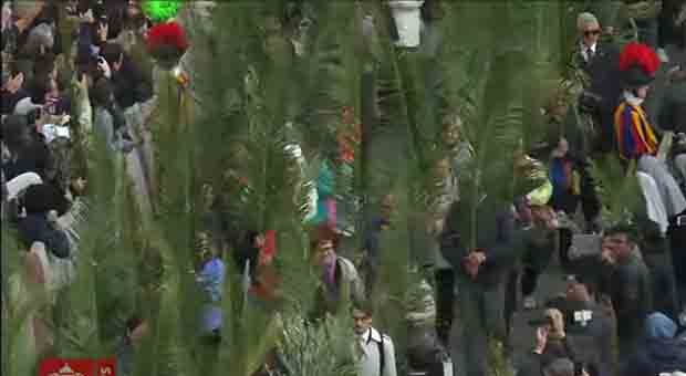 Pope Francis Celebrates Palm Sunday in Vatican