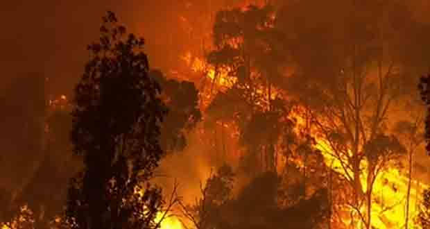 Bushfires wrecking havoc in Australia.