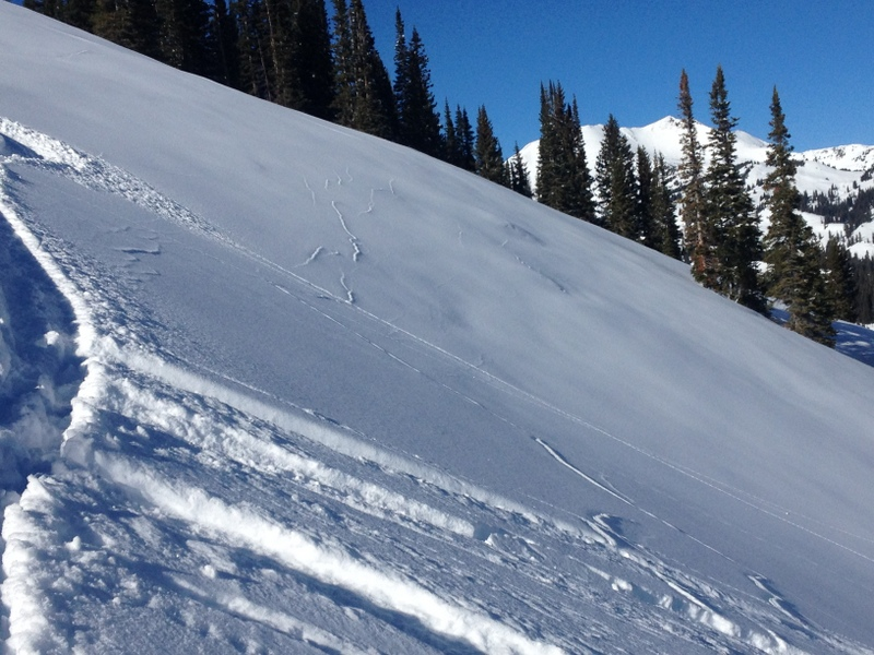 Echelon cracks noted on hard turn mid-slope from skier on January 15th, 2015