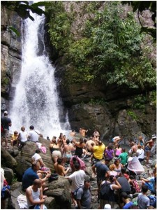 CBC students bathe at La Mina Falls in El Yunque National Rainforest in Puerto Rico.