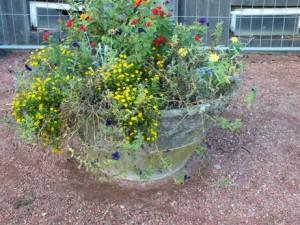 jardinière en fibrociment cbconseil