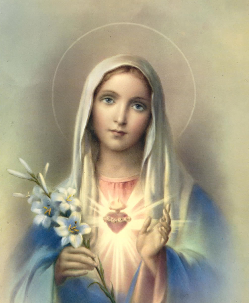 IHM - Immaculate Heart of Mary