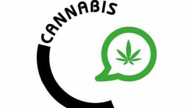 logo cannabis cbd info