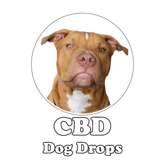 CBD oil dog tincture