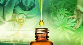 CBD Oil Benefits Review – Health Benefits of CBD Oil