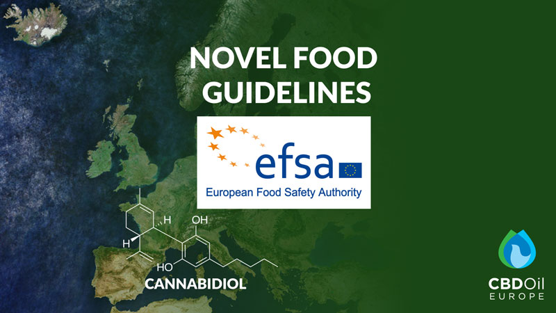 CBD novel food News Ireland